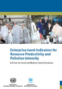 Enterprise Level Indicators for Resource Productivity and...